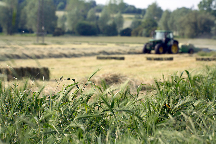Farmer in the process of baling hay