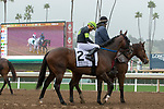 ARCADIA, CA  MARCH 10: #2 Bowies Hero, ridden by Corey Nakatani, in the post parade of the Frank E. Kilroe Mile (Grade l) on March 10, 2018, at Santa Anita Park in Arcadia, CA(Photo by Casey Phillips/ Eclipse Sportswire/ Getty Images)