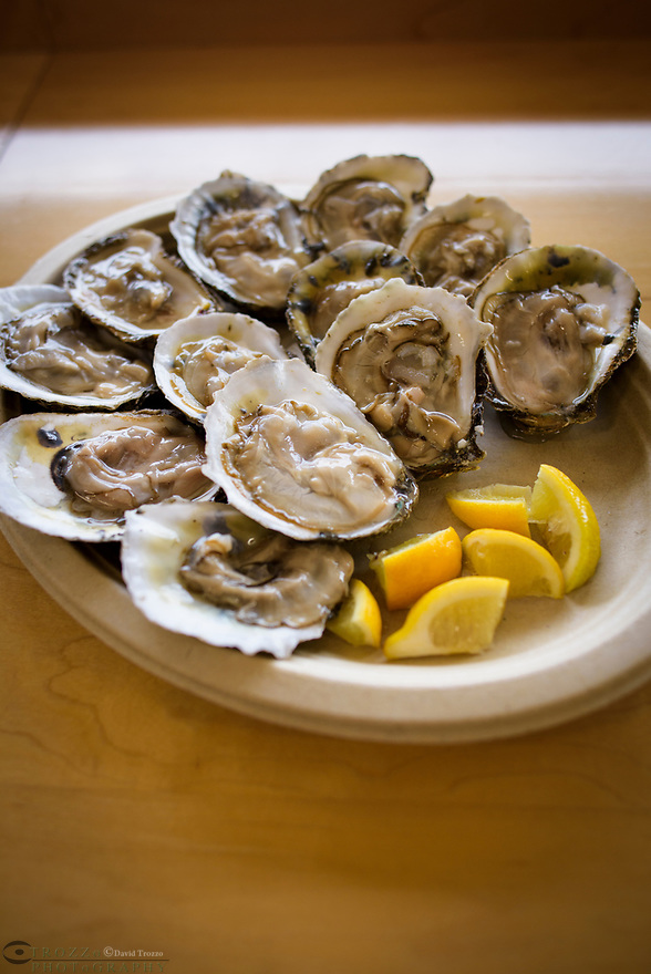 Plate of Oysters on the half shell.