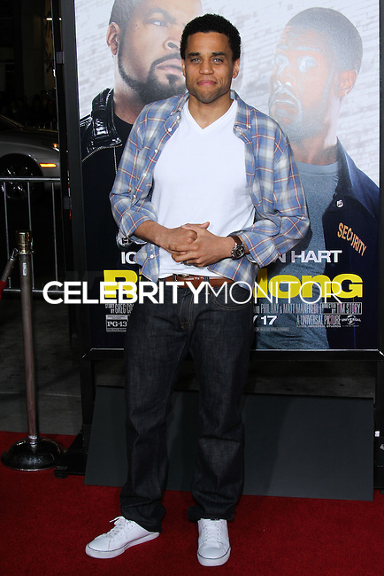"""HOLLYWOOD, CA - JANUARY 13: Michael Ealy  at the Los Angeles Premiere Of Universal Pictures' """"Ride Along"""" held at the TCL Chinese Theatre on January 13, 2014 in Hollywood, California. (Photo by David Acosta/Celebrity Monitor)"""