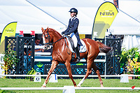 NZL-Sophie Alexander rides World Famous during the CIC2* Eventing Dressage. 2018 NZL-Horse of the Year Show. Hastings. Friday 16 March. Copyright Photo: Libby Law Photography