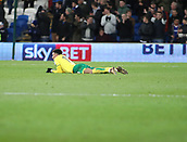 1st December 2017, Cardiff City Stadium, Cardiff, Wales; EFL Championship Football, Cardiff City versus Norwich City; Josh Murphy of Norwich City lies dejected after his team go 2-1 behind