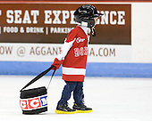 The puck bag was a bit too heavy for this helper. - The visiting Boston College Eagles defeated the Boston University Terriers 3-2 to sweep their Hockey East series on Friday, January 21, 2011, at Agganis Arena in Boston, Massachusetts.