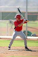 Tucker Barnhart - Cincinnati Reds - 2010 Instructional League.Photo by:  Bill Mitchell/Four Seam Images..