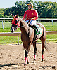 Unbruden winning at Delaware Park on 9/18/13