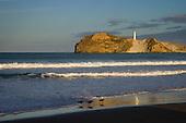 Oystercatchers on beach at Castlepoint