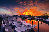 Boats and Marina, Cape May, New Jersey