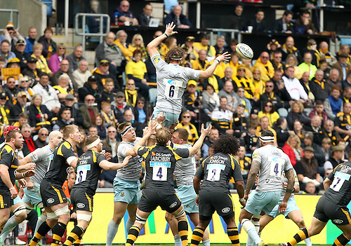 03.04.2016. Ricoh Arena, Coventry, England. Rugby Aviva Premiership. Wasps versus Northampton Saints.   Saints captain Tom Wood takes the lineout.