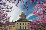 BJ 4.25.17 Main Building 2532.JPG by Barbara Johnston/University of Notre Dame