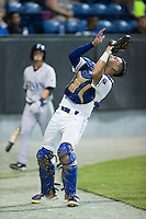 Burlington Royals catcher Nathan Esposito (7) settles under  foul pop fly in front of the Princeton Rays dugout at Burlington Athletic Stadium on August 12, 2016 in Burlington, North Carolina.  The Royals defeated the Rays 9-5.  (Brian Westerholt/Four Seam Images)
