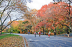 Bicyclists and joggers in Central Park, New York City, in the fall