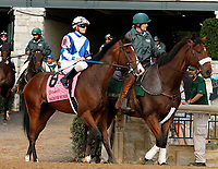"""October 07, 2018 : #8 Salvator Mundi and jockey Brian Hernandez Jr. before running in the 28th running of The Dixiana Bourbon (Grade 3) $250,000 """"Win and You're In Breeders' Cup Juvenile Turf Division"""" at Keeneland Race Course on October 07, 2018 in Lexington, KY.  Candice Chavez/ESW/CSM"""