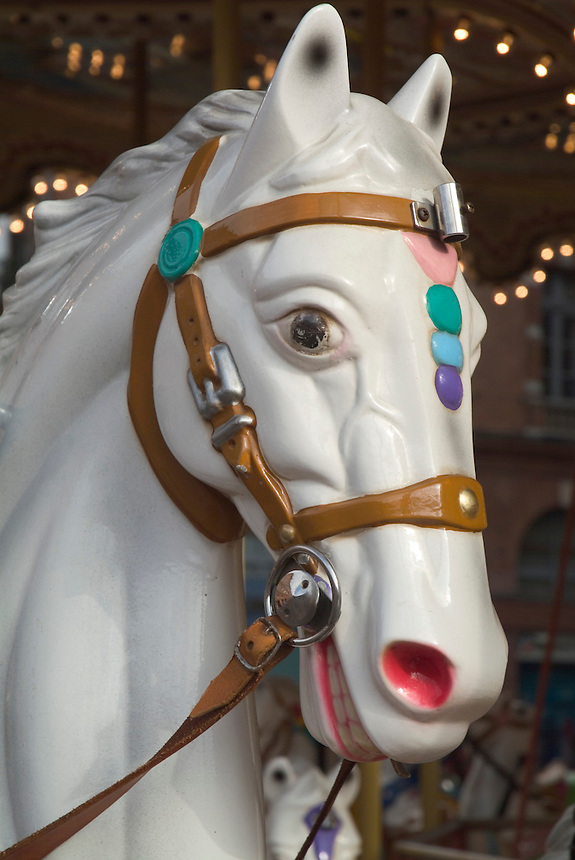 Head of a carousel horse looking you in the eye, in Toulouse, France.