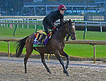 November 1, 2018 : Gustav Klimt, trained by Aidan O'Brien, trains for the Breeders' Cup Mile at Churchill Downs on November 1, 2018 in Louisville, KY. Jessica Morgan/ESW/CSM