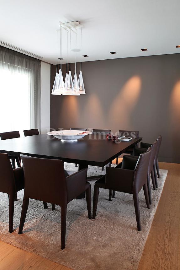 luxury contemporary dining room