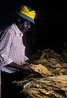 Zimbabwe tabacco
