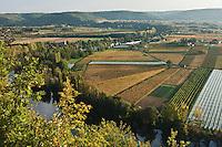 Europe/Europe/France/Midi-Pyrénées/46/Lot/Crayssac: Boucle du Lot  et  vignoble AOC Cahors depuis le Col de Crayssac
