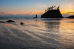Olympic National Park, WA<br /> Silhouetted seastacks and sunset reflections at Second Beach