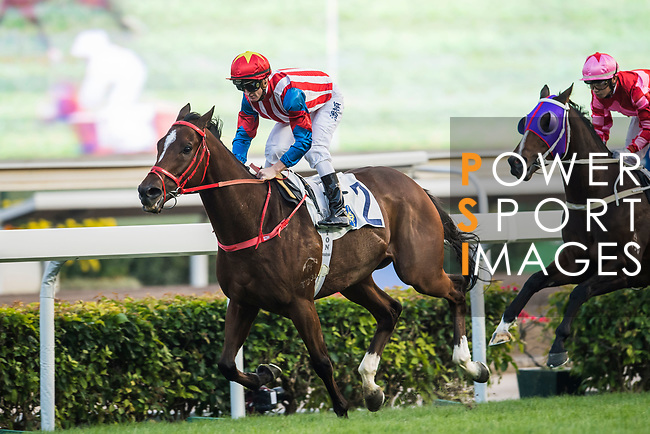 Jockey Zac Purton riding Spicy Sure wins the the Race 9, Jim and Tonic Handicap, during the Longines Hong Kong International Races at Sha Tin Racecourse on December 10 2017, in Hong Kong, Hong Kong. Photo by Victor Fraile / Power Sport Images