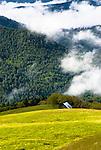 Barn, Redwood National Park