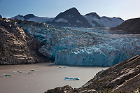 Nellie Juan Lagoon and Glacier, Prince William Sound, Chugach National Forest, Kenai Peninsula, southcentral, Alaska.