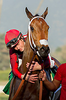 ARCADIA, CA   FEBRUARY 3 : #5 Itsinthepost, gets a big hug from jockey Tyler Baze after winning the San Marcos Stakes (Grade ll) on February 3, 2018 at Santa Anita Park in Arcadia, CA.(Photo by Casey Phillips/ Eclipse Sortswire/ Getty Images)