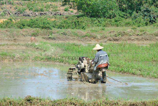 Asia, Vietnam, Hue. Vietnamese farmer working in the field.