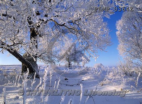 Marek, CHRISTMAS LANDSCAPES, WEIHNACHTEN WINTERLANDSCHAFTEN, NAVIDAD PAISAJES DE INVIERNO, photos+++++,PLMP0364Z,#xl#