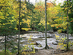 The Sturgeon River Surrounded By Trees In Autumn Colors, Michigan's Upper Peninsula, USA : Low Res File - 8X10 To 11X14 Or Smaller, Larger If Viewed From A Distance
