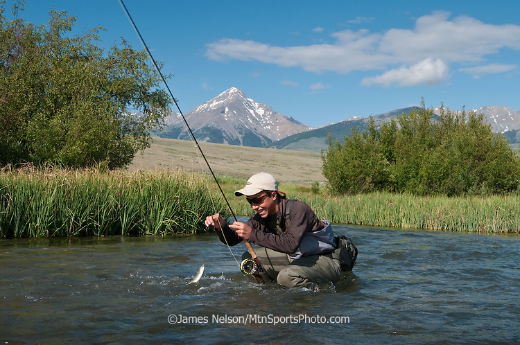 Andy Nelson, 13, brings a rainbow trout to hand while fly fishing on Birch Creek, Idaho, during a summer morning.