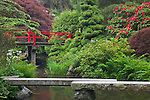 Seattle, WA<br /> Kubota Garden city park, Heart Bridge and a stone bridge span the Necklace of Ponds on Mapes creek with flowering rhododendron in the background