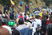 EL VERJON - COLOMBIA, 16-02-2020: Un pelotón de ciclistas durante la sexta etapa del Tour Colombia 2.1 2020 con un recorrido de 182,6 km que se corrió entre Zipaquirá y El Once Verjón, Cundinamarca. / A group of riders during the sixth stage of 182,6 km as part of Tour Colombia 2.1 2020 that ran between Zipaquira and El Once Verjon, Cundinamarca.  Photo: VizzorImage / Darlin Bejarano / Cont