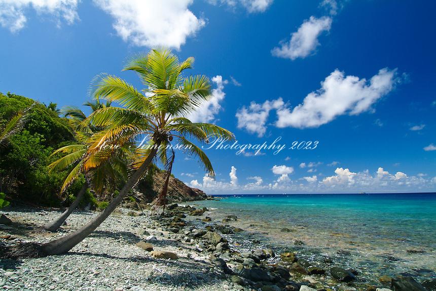 Devers Bay<br /> St John<br /> U.S. Virgin Islands