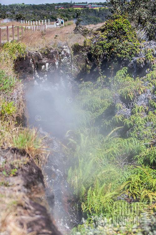 Steam vent at Hawai'i Volcanoes National Park, Big Island.