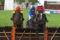 Winner of The Tie The Knot Catering Handicap Hurdle Poucor (r) ridden by Marc Goldstein and trained by Mick Channon during Horse Racing at Plumpton Racecourse on 4th November 2019