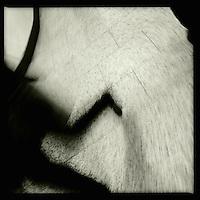 Eine Frau im U-Bahnhof. Berlin Streetviews<br />25.11.2013, Berlin<br />Copyright: Christian-Ditsch.de<br />[Inhaltsveraendernde Manipulation des Fotos nur nach ausdruecklicher Genehmigung des Fotografen. Vereinbarungen ueber Abtretung von Persoenlichkeitsrechten/Model Release der abgebildeten Person/Personen liegen nicht vor. NO MODEL RELEASE! Don't publish without copyright Christian-Ditsch.de, Veroeffentlichung nur mit Fotografennennung, sowie gegen Honorar, MwSt. und Beleg. Konto:, I N G - D i B a, IBAN DE58500105175400192269, BIC INGDDEFFXXX, Kontakt: post@christian-ditsch.de<br />Urhebervermerk wird gemaess Paragraph 13 UHG verlangt.]