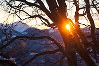 Sunrise from Monte Boglia, Ticino, Switzerland, January 2015.