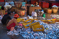 4_Cambodia_FishMarket_Whole_Sale