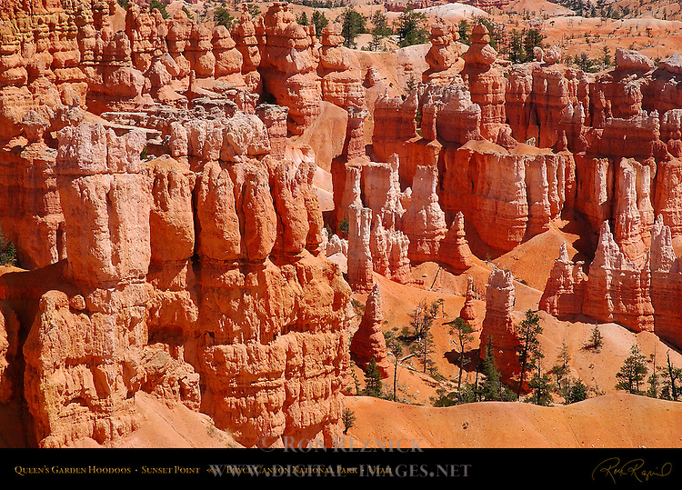 Queen's Garden Hoodoos from Sunset Point, Bryce Canyon National Park, Utah