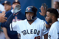 Edwin Espinal (22) of the Toledo Mud Hens high fives teammates after hitting a home run against the Louisville Bats at Fifth Third Field on June 16, 2018 in Toledo, Ohio. The Mud Hens defeated the Bats 7-4.  (Brian Westerholt/Four Seam Images)