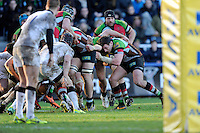 Tom Guest of Harlequins controls the rolling maul as they approach the Newcastle line during the Aviva Premiership match between Harlequins and Newcastle Falcons at the Twickenham Stoop on Saturday 15th February 2014 (Photo by Rob Munro)