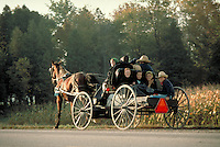 An Amish family of eight enjoys an open horse and buggy ride on a rural highway in Ontario. Amish family. Kitchener Ontario Canada country road.
