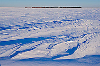 WInd blown prairie landscape in winter<br /> Grande Pointe<br /> Manitoba<br /> Canada