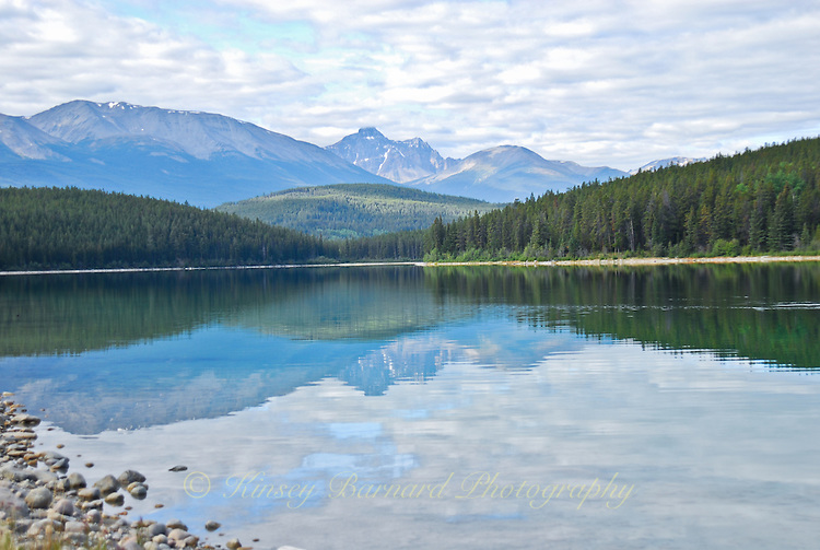 &quot;PATRICIAN PATRICIA&quot;<br />