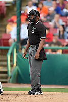 Umpire Christopher Lloyd during a game between the Quad Cities River Bandits and Kane County Cougars on August 14, 2014 at Third Bank Ballpark in Geneva, Illinois.  Kane County defeated Quad Cities 4-1.  (Mike Janes/Four Seam Images)