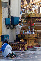 Myanmar, Burma, Yangon.  Sule Pagoda.  Woman Praying while Man Pours Water over a Small Buddha Statue.
