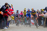 Belgian Champion Yves Lampaert and Philippe Gilbert (BEL) Deceuninck-Quick Step, Wout Van Aert (BEL) Jumbo-Visma, Peter Sagan (SVK) Bora-Hansgrohe and Sep Vanmarcke (BEL) EF Education First in action during the 117th edition of Paris-Roubaix 2019, running 257km from Compiegne to Roubaix, France. 14th April 2019<br /> Picture: Thomas van Bracht/PelotonPhotos.com | Cyclefile<br /> All photos usage must carry mandatory copyright credit (&copy; Cyclefile | Thomas van Bracht/PelotonPhotos.com)