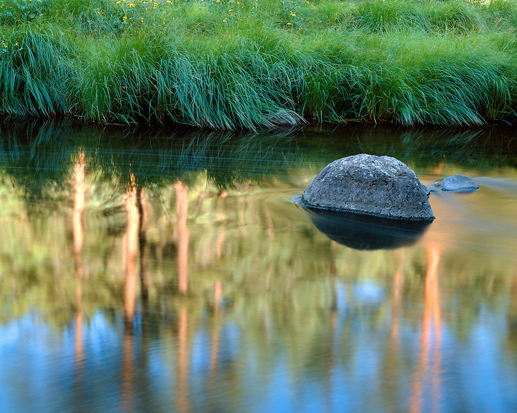 Reflections in the Black River; Apache-Sitgreaves National Forest, AZ