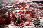 Early morning after snowfall in Utah's Bryce Canyon.