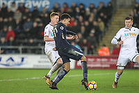 Dele Alli of Spurs scores his goal during the Premier League match between Swansea City and Tottenham Hotspur at the Liberty Stadium, Swansea, Wales on 2 January 2018. Photo by Mark Hawkins / PRiME Media Images.